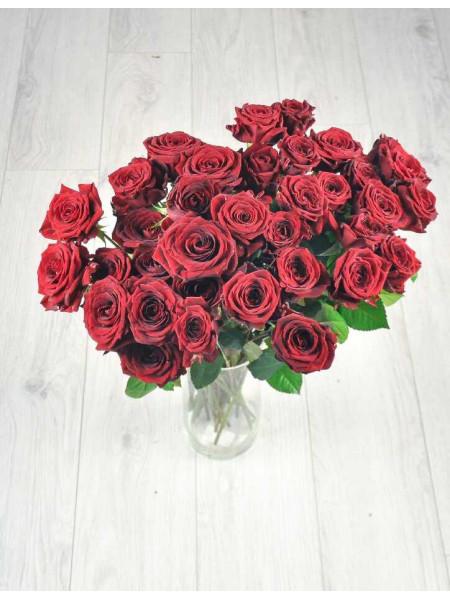 Букет из 35 красных роз.