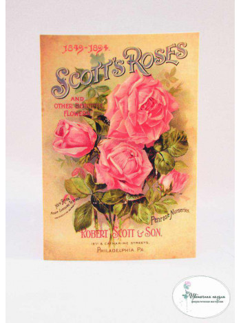 "Открытка ""Scott's Roses"""
